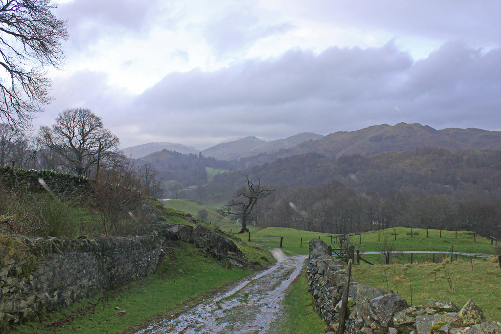 Lake District rainy path