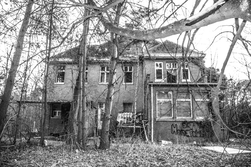 house-surrounded-with-trees-on-grayscale-photography-923269