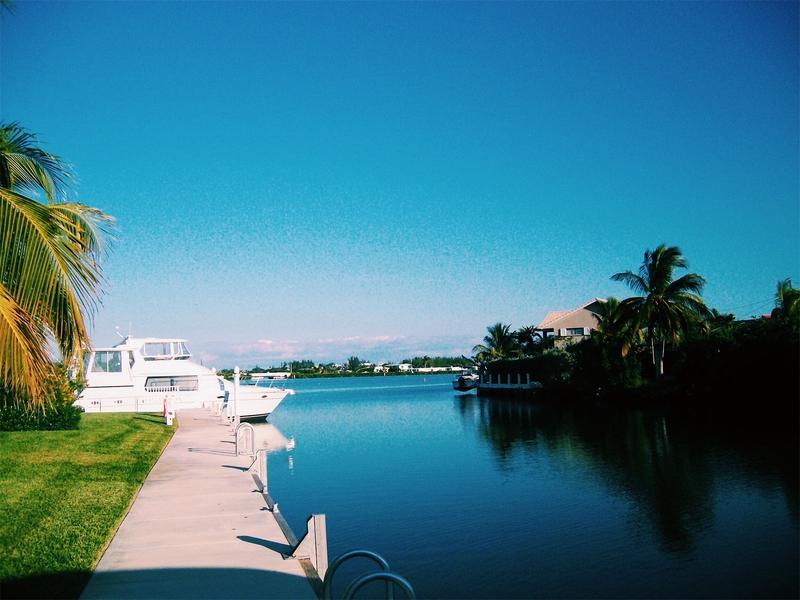 Florida marina.jpg